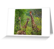 Journey of Giraffe Greeting Card