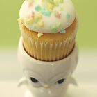 Cupcake Owl by Hilary Walker