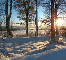 Snow Scene by dgscotland