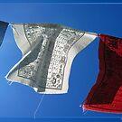 Prayer Flags by Bine