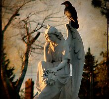 Angel And Crow by gothicolors