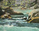 River Rocks by Karen Ilari
