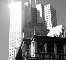 Metropolisanfrancisco. 2012 by Igor Pozdnyakov