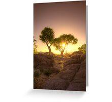 Shading Sunset Greeting Card
