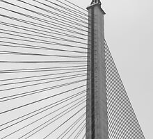 Rama VIII Bridge, Bangkok by Fern Blacker