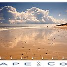 Wellfleet, Cape Cod Poster by capecodart