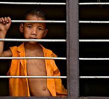 Little Monk in the Window by Valerie Rosen