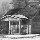 The Old Homestead by Sonya Lynn Potts