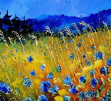 Cornflowers 45 by calimero