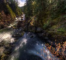 Sooke River by Don Guindon