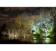 Illuminated trees at St James Park London by night Photographic Print