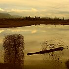 Reflected junk in a farm pond by Duncan Cunningham