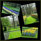 April in the Keukenhof Gardens Collage by MidnightMelody