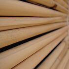 Bamboo blinds by Ali Choudhry