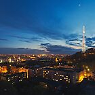 Night view on High Castle Hill, Lviv by Oleksiy Rybakov