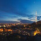 Night view on High Castle Hill, Lviv by Oleksii Rybakov