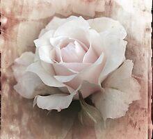 Blush by Diane Johnson-Mosley