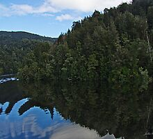 Reflections Gordon River, Tasmania by Julia Harwood