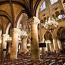 Europe: Paris, Notre Dame by Scott G Trenorden