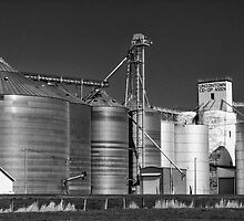 Grain Elevators by pvsnyder