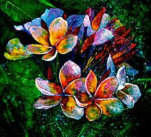 Frangipani....A Touch of Frost... by ©Janis Zroback