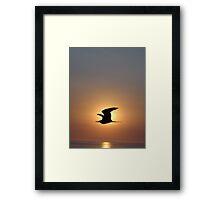 Passing The Sun - Pasando El Sol Framed Print