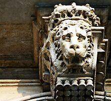 The Cowardly Lion by Jewel Pfaffroth