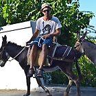 Donkey Ride Greece by Dime9d