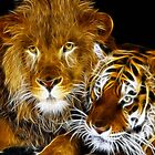 AMAZING FRACTAL LIGHT LION AND TIGER by Christopher McCabe