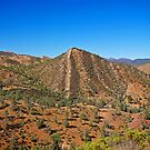 #36/72 Flinders Ranges Cone Hill by Richard  Windeyer