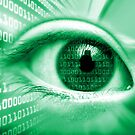 ON THE NET GREEN BINARY EYE GRAPHIC DESIGN by Christopher McCabe