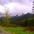 Alaskan scenery by Erika Price