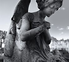 Dreaming Angel by Anthony Cook
