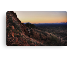 Ghost Gum over Ghost Gum Flats Canvas Print