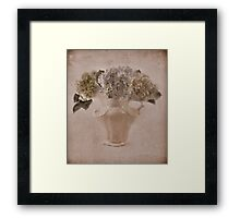 Hydrangea Vintage Beauty Framed Print