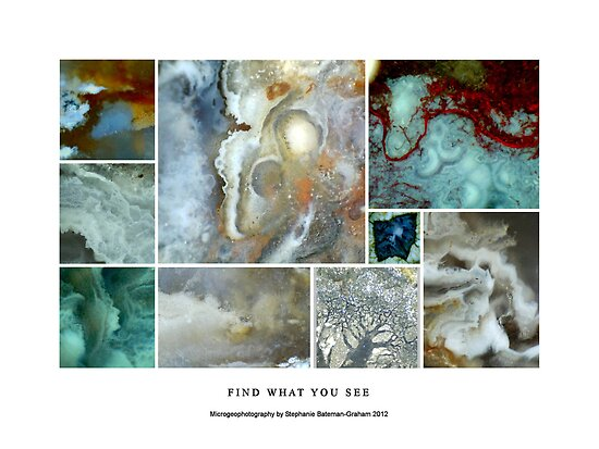 Find What You See by Stephanie Bateman-Graham