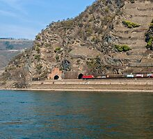 Freight train opposite Oberwesel in the Rhine Valley, Germany. by David A. L. Davies