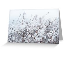 White abstract Greeting Card