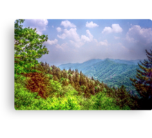 Valley Shot - North Carolina Canvas Print