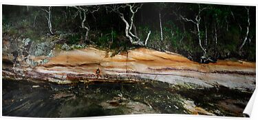 Colours of Sandstone Point by Barbara Burkhardt