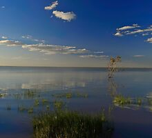Menindee Blue by donnnnnny