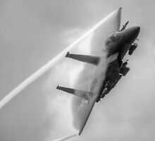 F15 onearm crop black and white by Rory Trappe