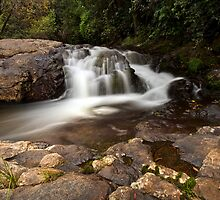 Kaiate ridge fall drift by Ken Wright