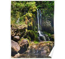 Petite Waterfall Poster
