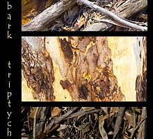 Bark Triptych by pennyswork