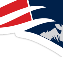 "VICT ""Pats Gameface""  Sticker"
