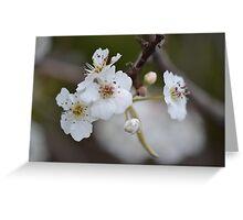 Blossom Heart Greeting Card