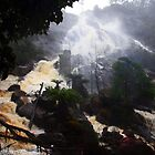 Beautiful Tasmania - St Columba Falls by georgieboy98