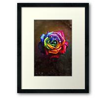 Rainbow Dream Rose Framed Print