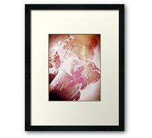 The Bringer of Storms Framed Print